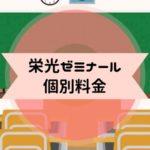 栄光ゼミナール 個別料金