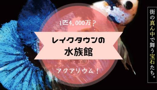 【レイクタウンアクアリウム】の世界一高いアロワナは最高で4000万円!