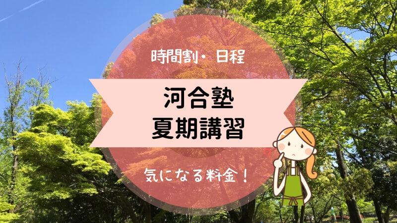 河合塾 夏期講習