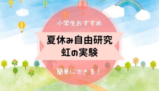 【夏休み自由研究!虹の作り方】小学生でも簡単に懐中電灯でつくれる