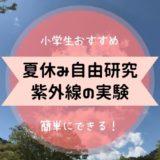 夏休み 自由研究 小学生 紫外線
