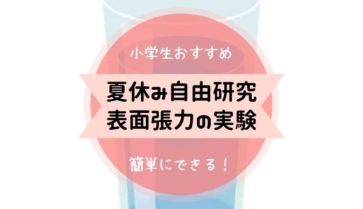 【夏休み自由研究!表面張力】水(しずく)はどうして丸くなるのか?小学生