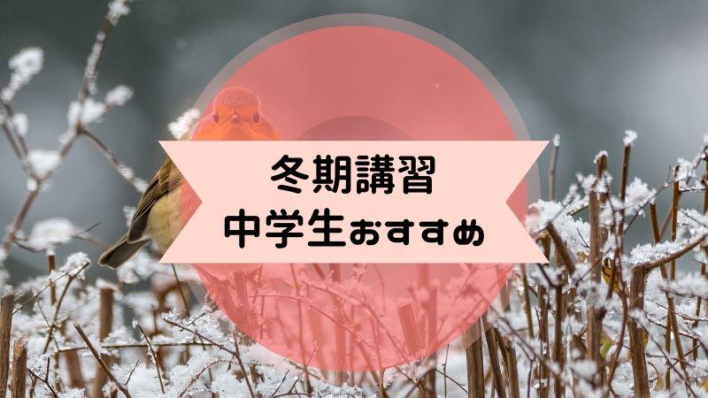冬期講習 中学生